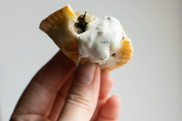 a vegetable samosa with yogurt sauce, with a bite take out, being held up for the camera