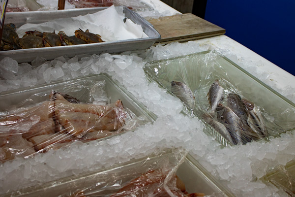 Fresh, local catches for sale at Carawan Seafood Company